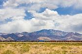 Desert Train — Stock Photo