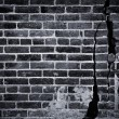 Dark Brick Wall — Stock Photo #16483017