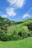 California Countryside — Stock Photo