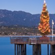 Wharf Christmas Tree — Stock Photo