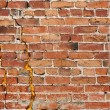 Gritty Brick Wall — Photo