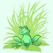 Little green frog on a leaf — Stock Vector