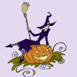 A witch sitting on a pumpkin with a broomstick in her hands waiting for Halloween to come — Stock Vector