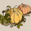 Pumpkins — Stock Vector #18590439
