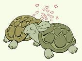 Turtle lovers — Stock Vector