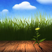 Fresh green grass with flowers — Stock Photo