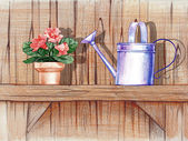 Shelf with flowers and watering can — Stock Photo