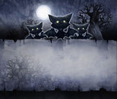 Halloween background with bat's — Foto de Stock