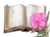 Peony flower and opened book — Stock Photo