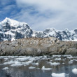 Antarctica — Stock Photo #28417437