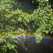 Rainbow — Stock Photo #28418625