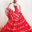 Flamenco — Stock Photo
