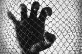 Prisoner hand — Stock Photo