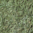 Stock Photo: Chopped dill