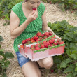 Women in a strawberrie field — Stock Photo