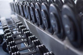 Dumb bells lined up — Stock Photo