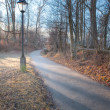 Stock Photo: Path with a Lantern