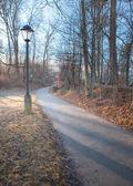 Path with a Lantern — Stock Photo