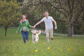 Parents to be  with dog enjoying the green — Stock Photo
