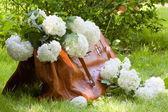 Carpetbag plein de fleurs blanches — Photo