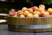 Meruňky v dřevěné misce — Stock fotografie