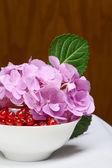 Groseilles et fleurs roses — Photo