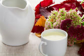 A cup of milk and milk jug — Stock Photo