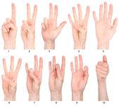 Números 1-10 em língua de sinais — Foto Stock