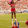 Stock Photo: FloridState University Cheerleading Squad