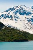 аляскинский хребет — Стоковое фото