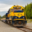 Stock Photo: AlaskTrain to Whittier