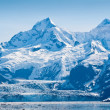 Glacier bay nationalpark i alaska — Stockfoto