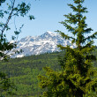 Forest and Mountains in Skagway, Alaska — Stock Photo
