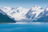 Parc national de glacier bay en alaska — Photo
