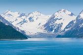 在阿拉斯加的冰川湾国家公园 — 图库照片