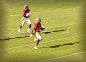 Florida State University Football — Stock Photo