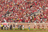 Florida state universität fußball — Stockfoto