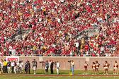 Futbolu uniwersyteckiego stanu floryda — Zdjęcie stockowe