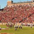 Постер, плакат: Florida State Home Football Game