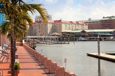 Tampa Convention Center and Harbour Island — Stock Photo
