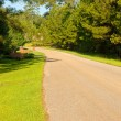 Country Road in Rural Community - Foto Stock