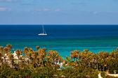 关于加勒比双体船 — 图库照片