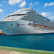 Cruise Ship — Stock Photo #21001843