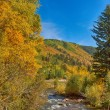 Fall in Colorado - Foto Stock