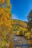 Fall in Colorado — Stock Photo