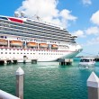 Stock Photo: Carnival Freedom