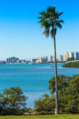 Clearwater, Florida — Stock Photo