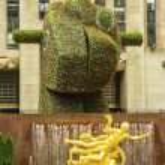 ������, ������: Rockefeller Center