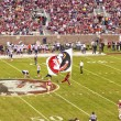 Постер, плакат: Florida State Seminole Football