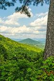 North Carolina — Stock Photo